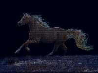 horse-letters-mosaic-003