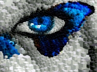 portrait-eye-butterflies-mosaic-07-02