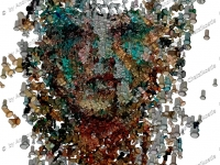 portrait_woman_vector_photomosaic_031