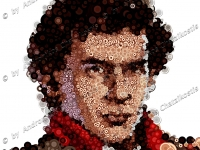 senna_ayrton_portrait_photomosaic_001